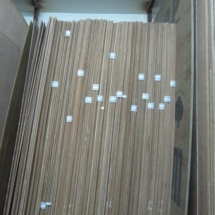 Teak Ply Groups 1